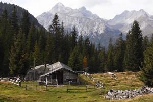 Alp Nursera ad Schwarzwald - © (C) by Caplio GX100 User