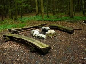 Feuerstelle Tannboden - © Wildnispark Zürich