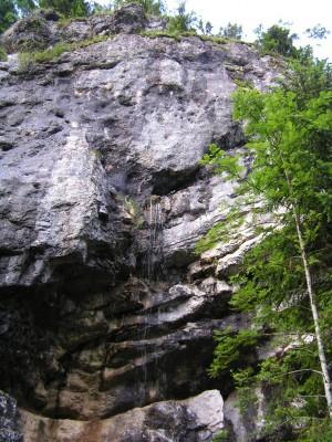 Col du Marchairuz - St-George - © Parc Jura vaudois