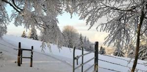 Winter auf der Wasserfallen - © Region Wasserfallen