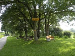 L'Y, Premier - © Parc Jura vaudois