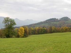 Rundroute von & nach Balsthal - ©  Naturpark Thal