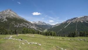 Aussichtsreich: Alp Grimmels
