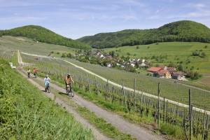 Schaffhauserland Bike Nr. 50 - ©
