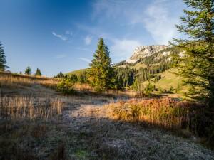 Exkursion Aktiv für die Natur - © FELDERVOGEL