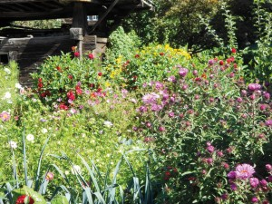 Vielfältige Gemüse- und Blumengärten