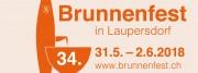 34. Brunnenfest Laupersdorf