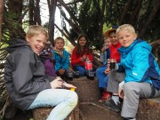 Freiwilligentag im Zauberwald